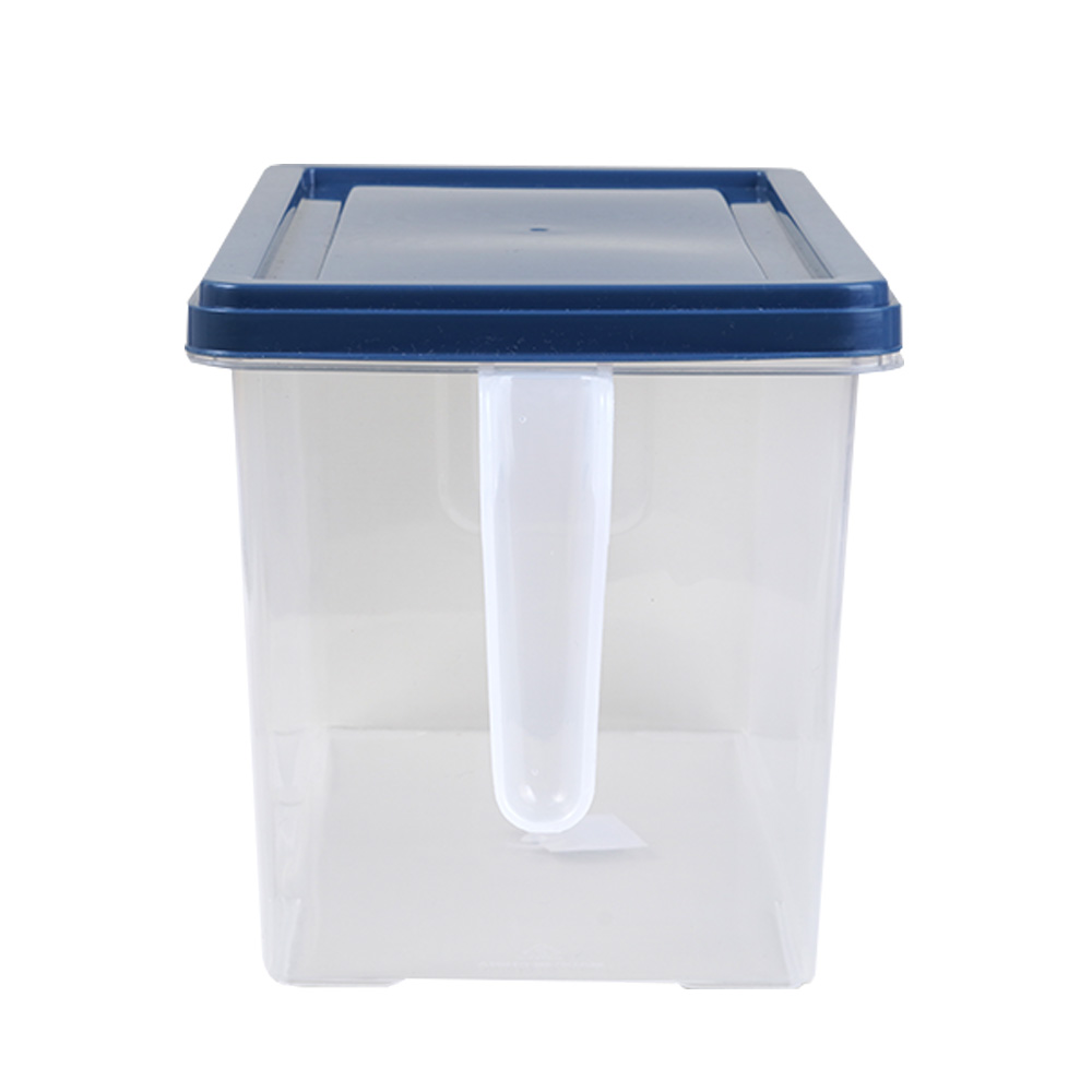 Food Regulator - Large Rectangular blue Cover Fruit And Vegetable Storage Box 27×14×15 Cm متجر 15 وأقل